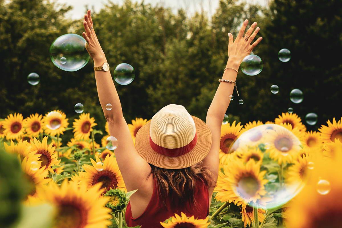 Sunny shop idee per la casa e il giardino i giardini di for Tutto per la casa shop online