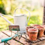 Giardinaggio: come iniziare?